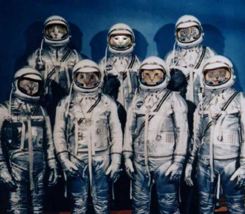 astronauts.png.png
